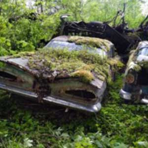 auto abbandonate2